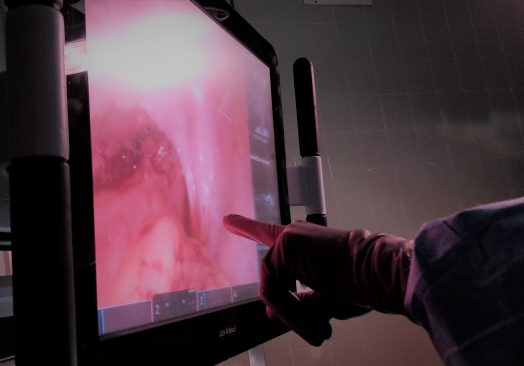 Cadaveric Minimally-Invasive Clinical Immersion for Colorectal & Thoracic Surgery